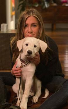 Дженифър Анистън в Деня на благодарността, в компанията на кучето й Лорд Честърфийлд