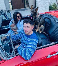 Един обикновен ден в семейството на Приянка Чопра и Ник Джонас